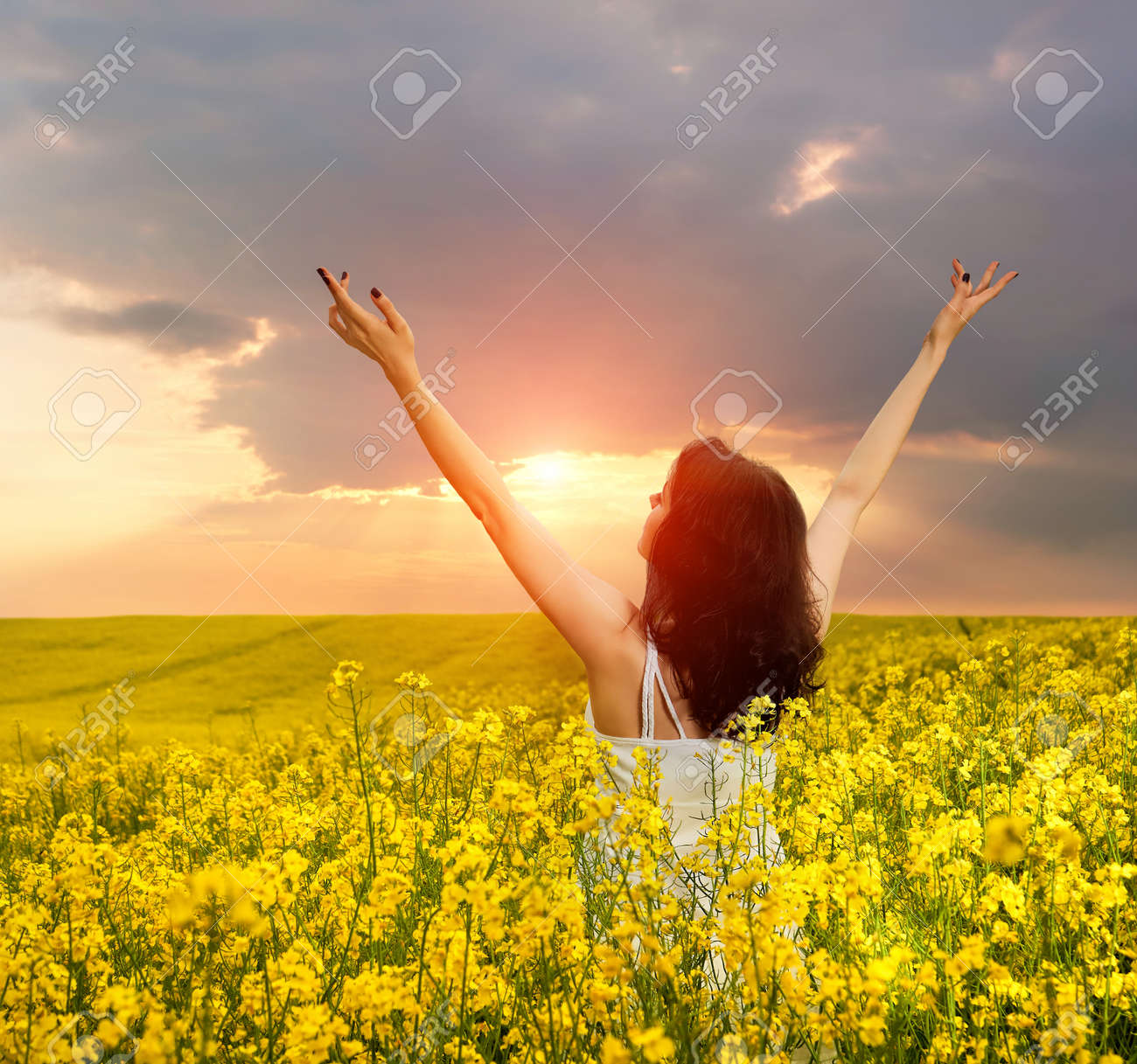 Woman In Field With Yellow Flowers At Summer Sunset Stock Photo