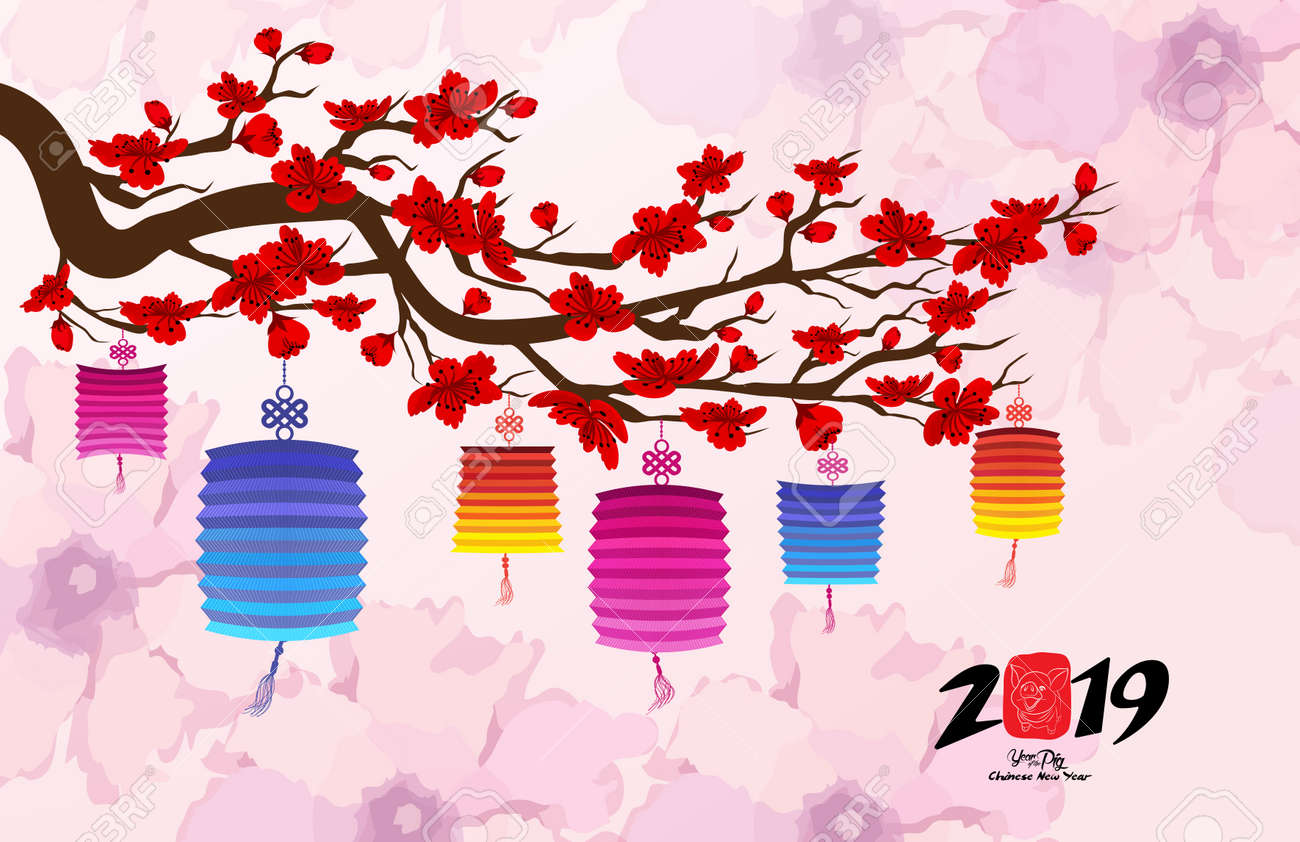 Chinese New Year 2019 With Lantern Cherry Blossom Background