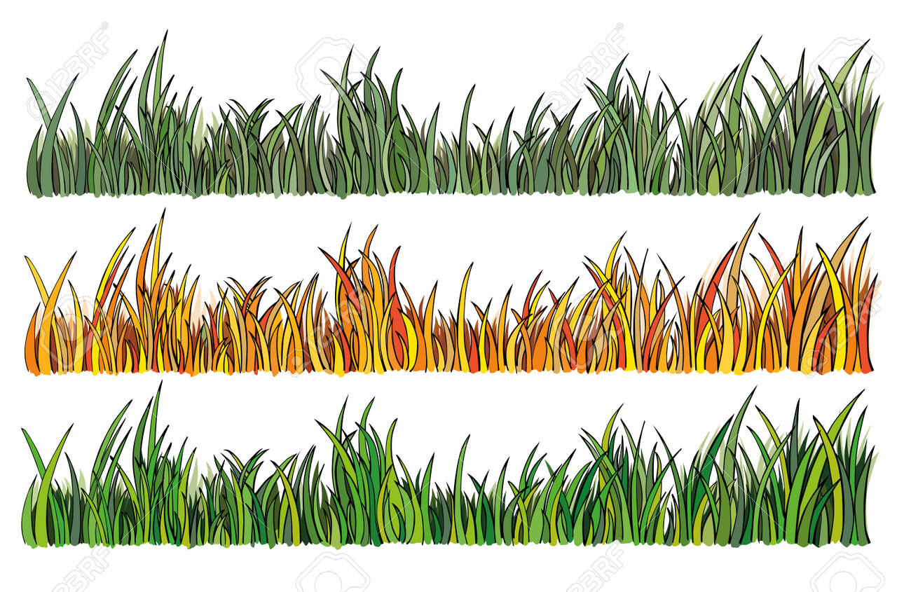 illustration of grass in 3 different colors Stock Vector - 17499780