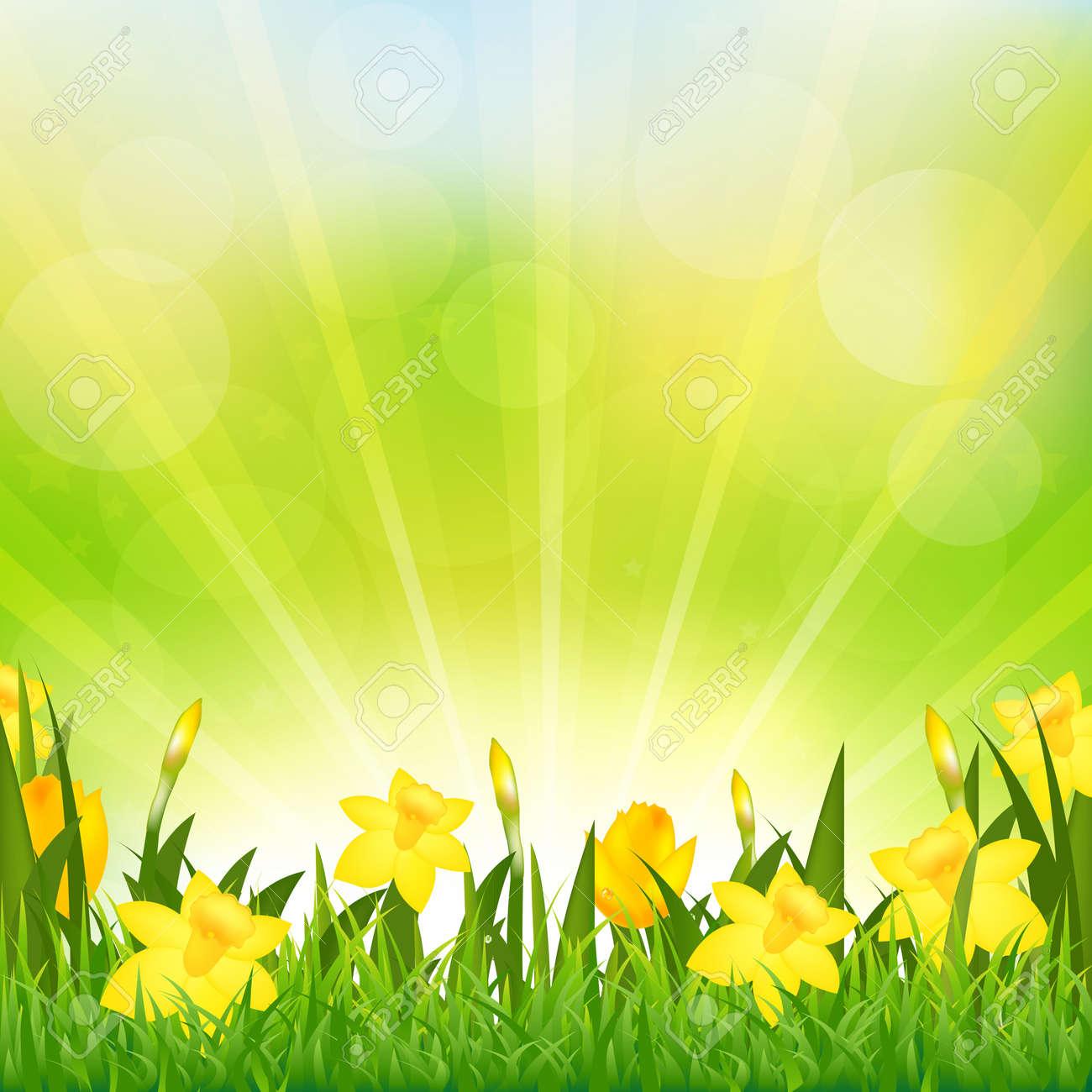 Flowers Easter Background Stock Vector - 12487205