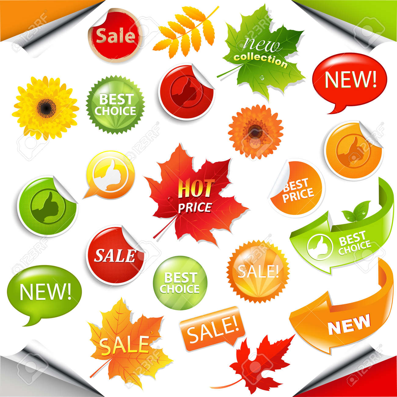 Autumn Collection Sale Elements With Leaves, Vector Illustration Stock Vector - 15155477
