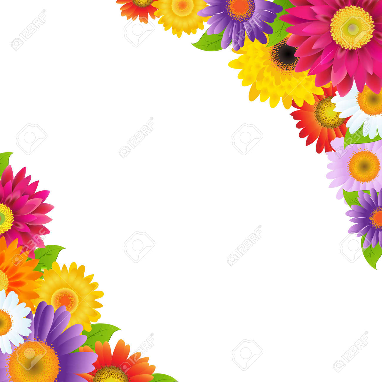 Colorful Gerbers Flowers Border, With Gradient Mesh, Vector Illustration - 26980561