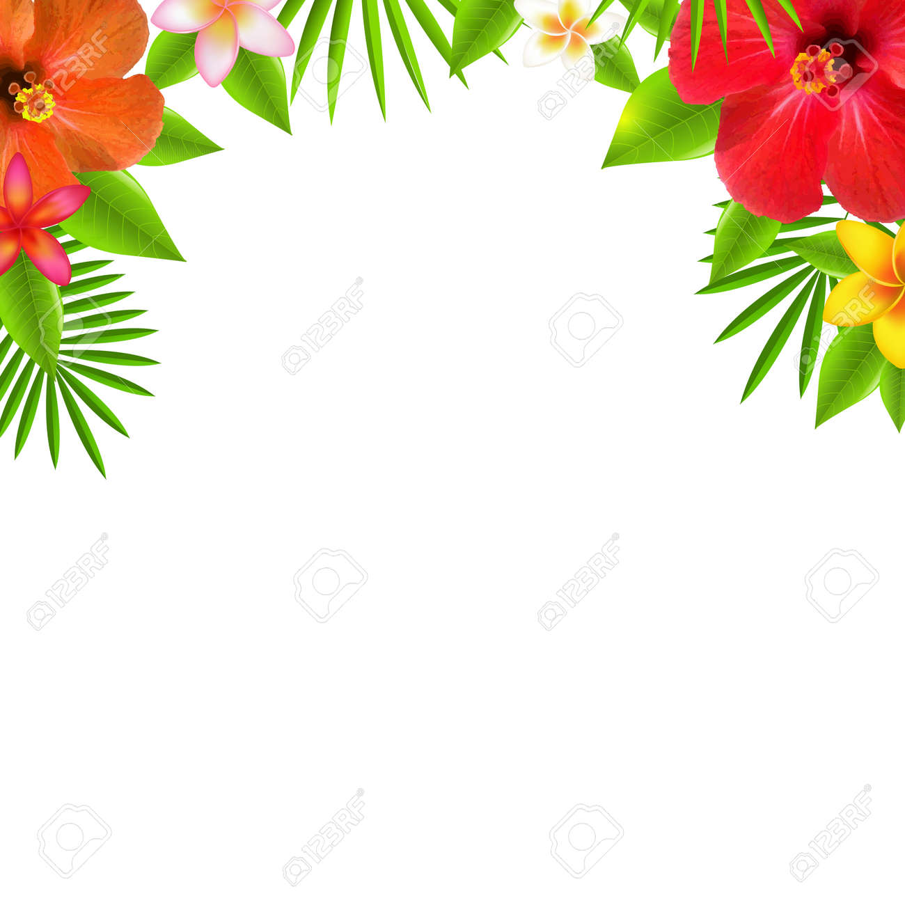 Tropical Flowers Border, With Gradient Mesh, Vector Illustration - 29835878