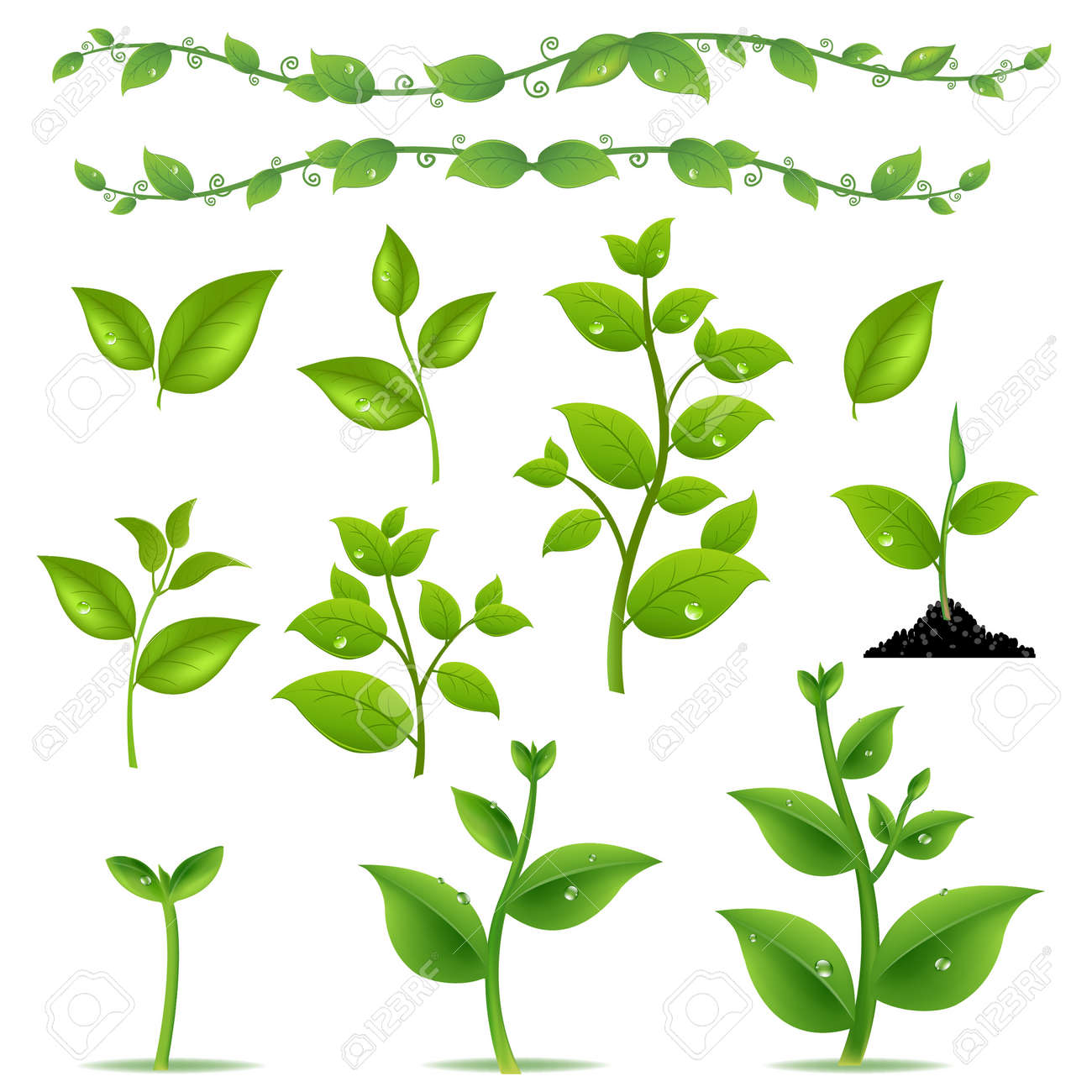 Set Leaves And Plants With Gradient Mesh, Vector Illustration - 38654607