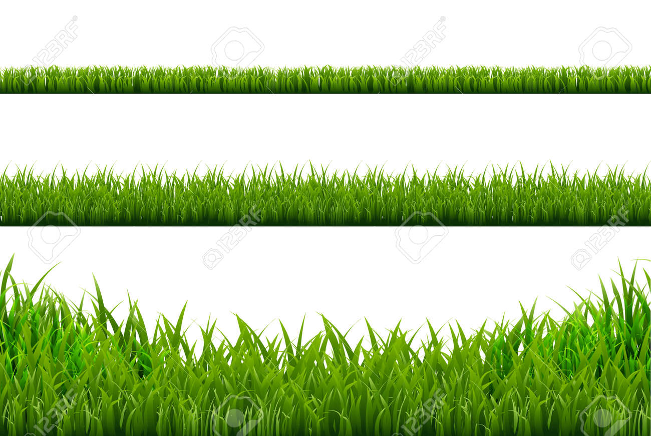 grass borders set vector illustration royalty free cliparts rh 123rf com vector cross product curly vector cross product formula