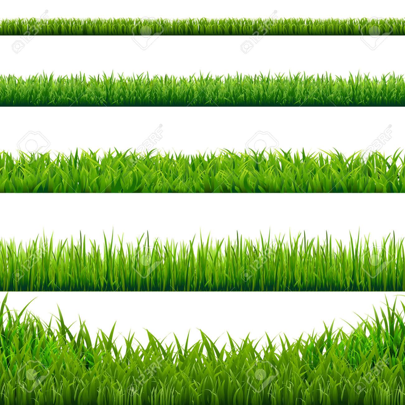 Big Grass Borders Set, Vector Illustration - 51631852