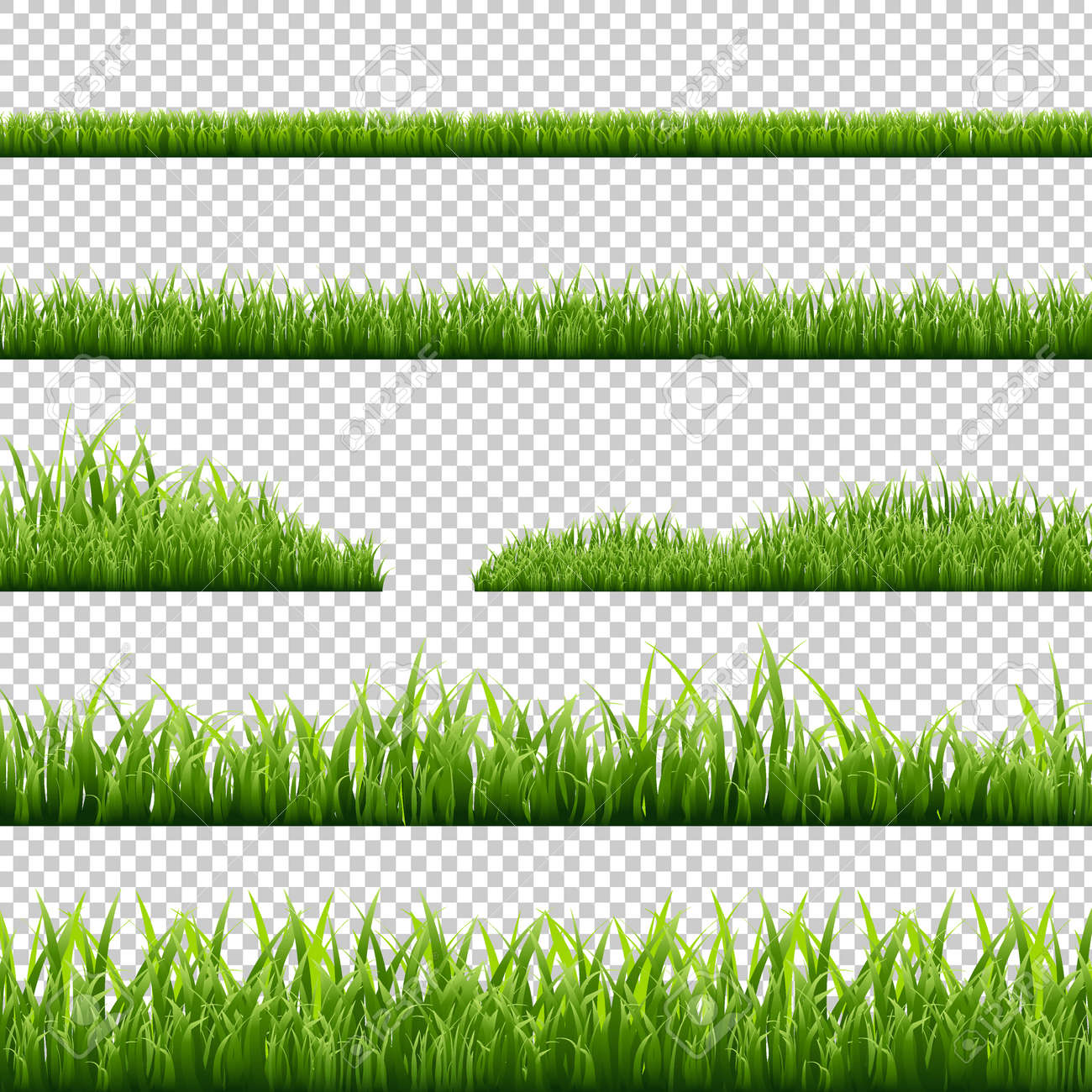 Grass Borders Set, Isolated on Transparent Background, Vector Illustration - 56875701