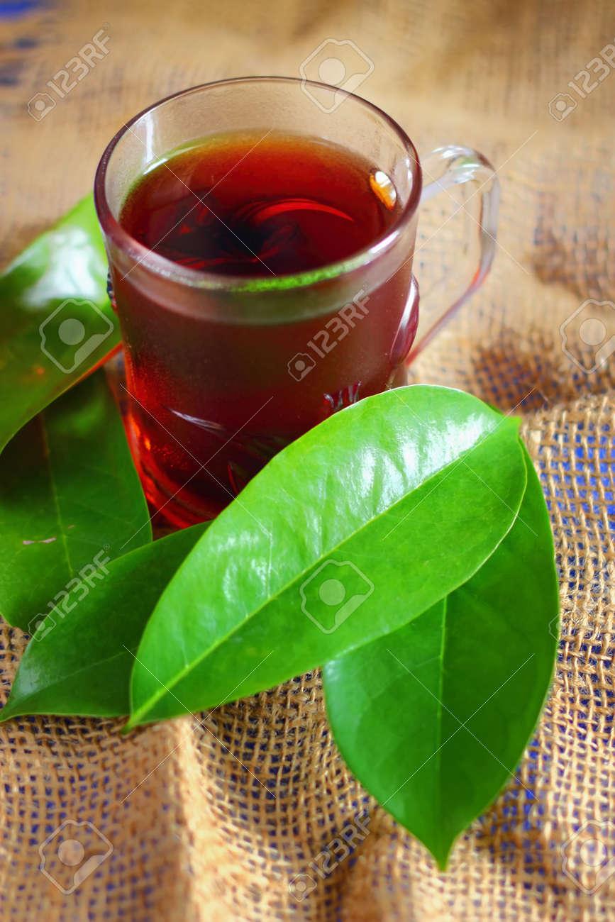 Pictures Of Soursop Tea