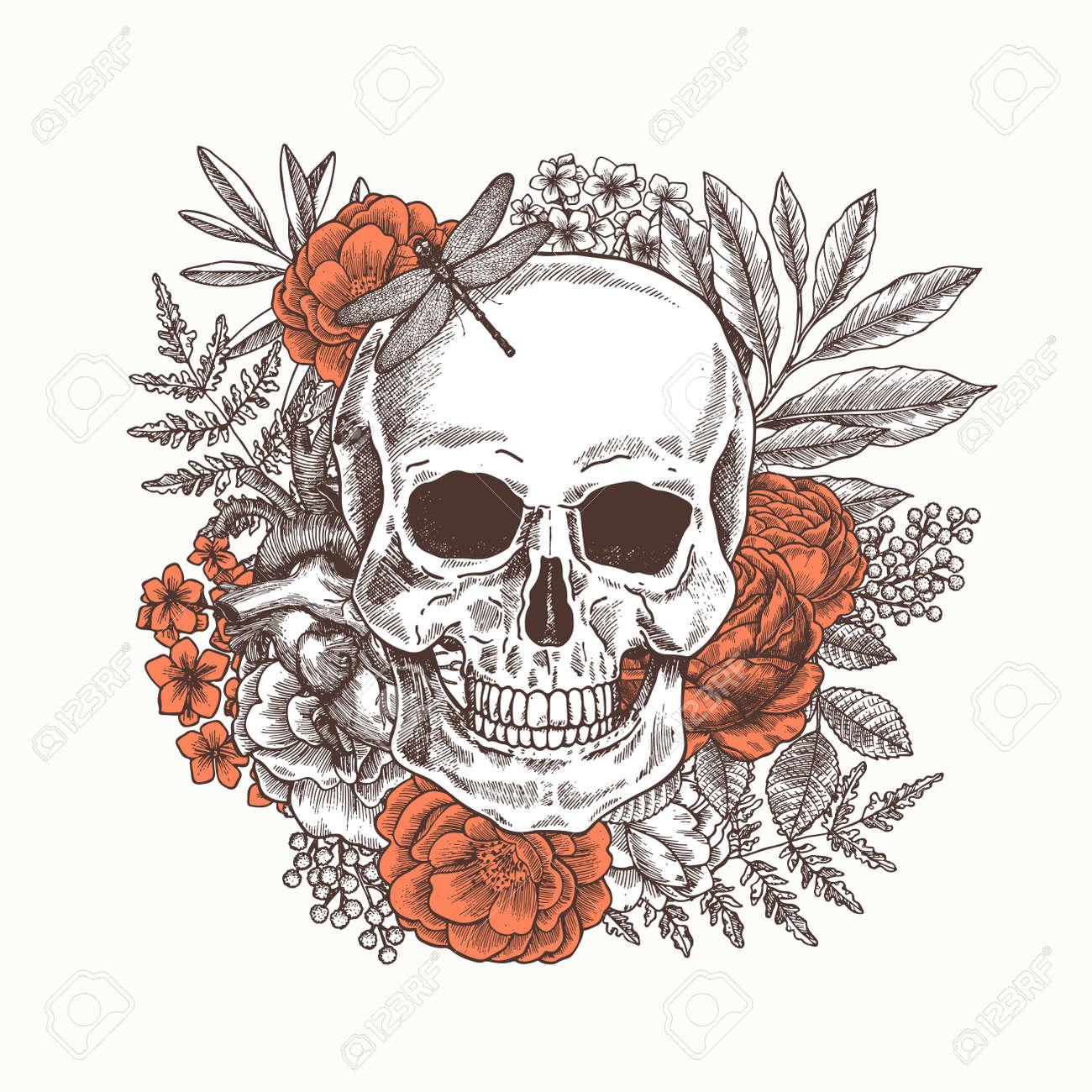 Floral Human Skull Tattoo Anatomy Vintage Illustration Royalty