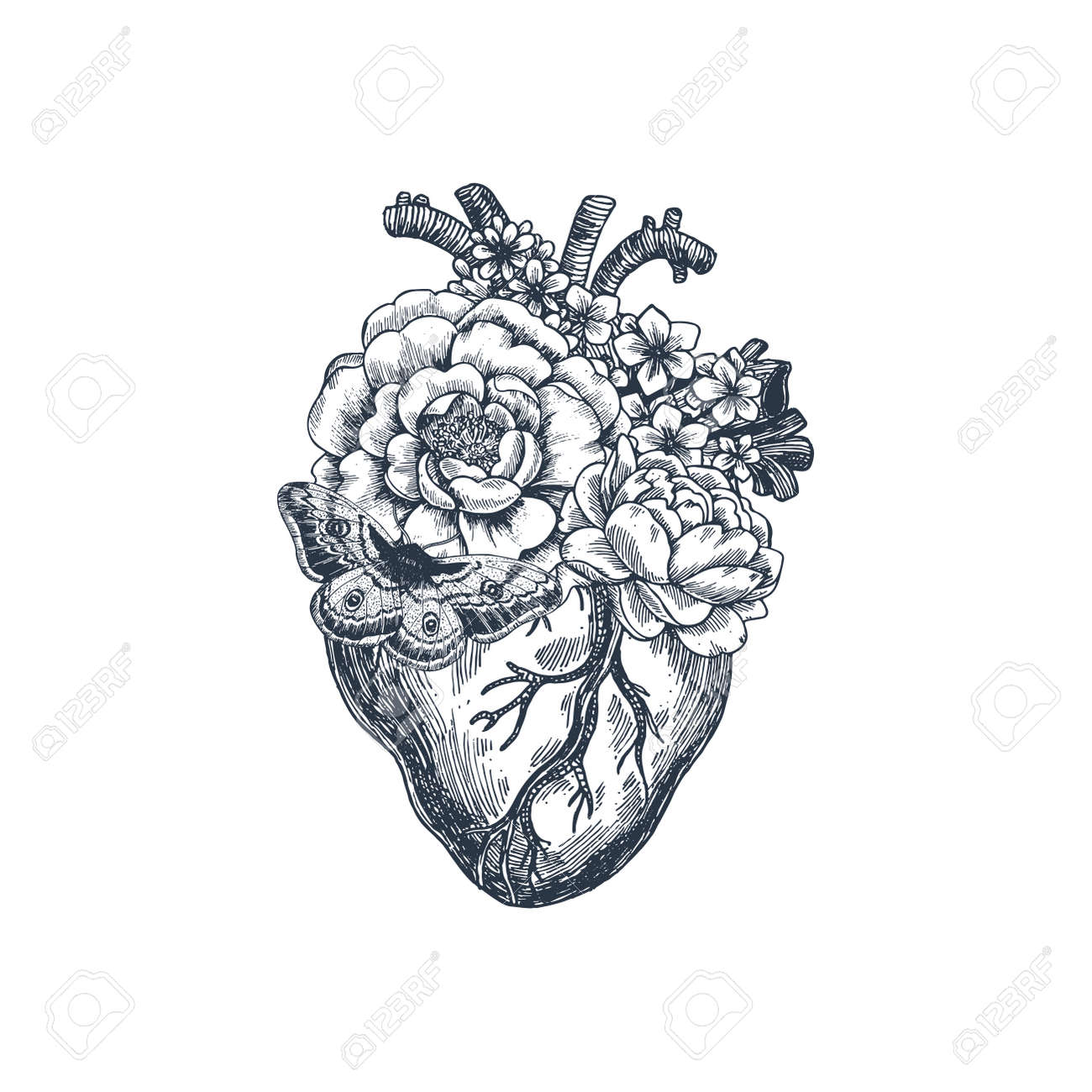 Tattoo Anatomy Vintage Illustration Floral Anatomical Heart
