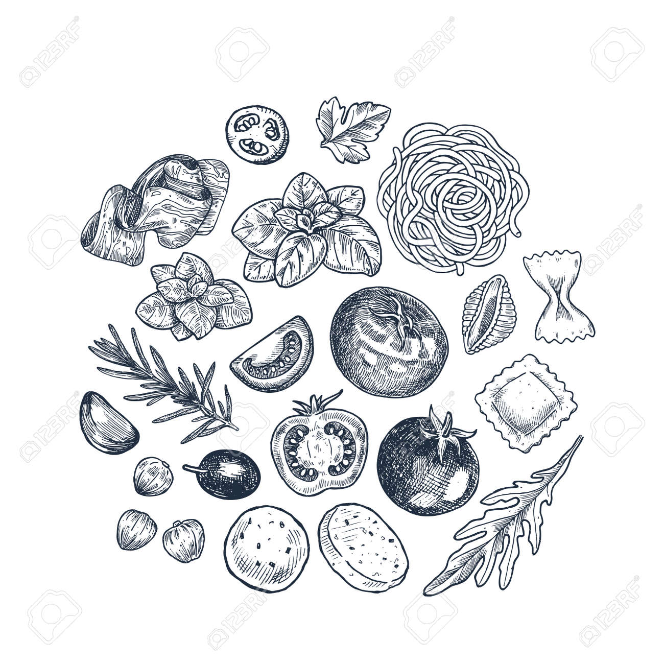 Tasty basil, tomato, olive, garlic, meat and pasta linear elements. Engraved illustration. Italian ingredients. - 150282603