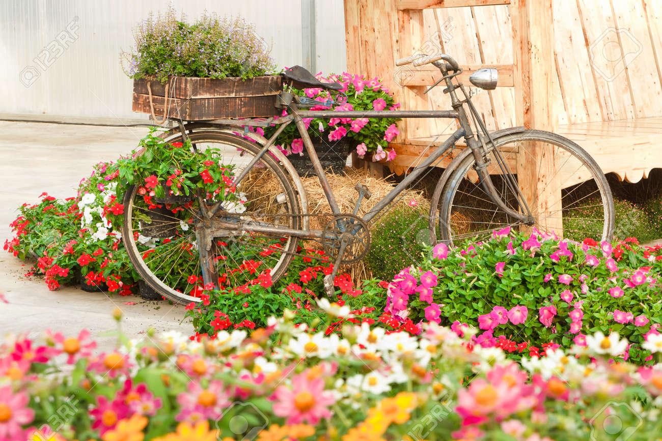 Altes Fahrrad Und Dekoriert Mit Blumen In Einem Schonen Garten