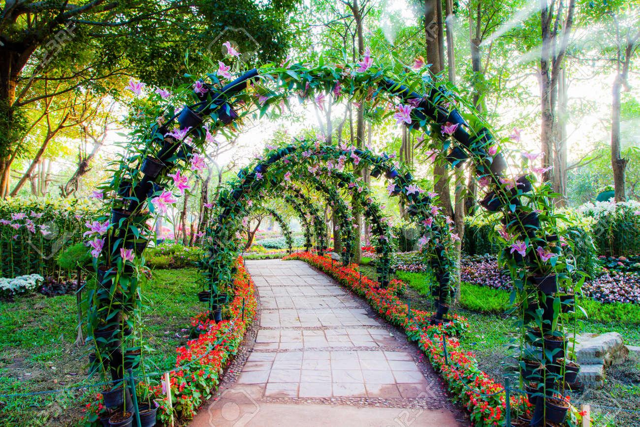 Schöne Blütenbögen Mit Gehweg In Zierpflanzen Garten Lizenzfreie