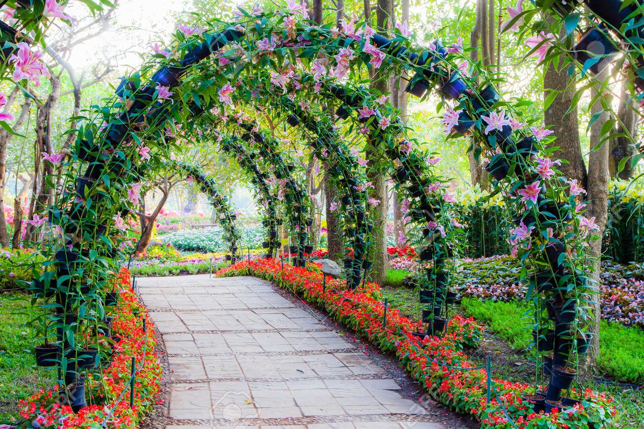 Schöne Blume Bögen Mit Gehweg In Zierpflanzen Garten Lizenzfreie