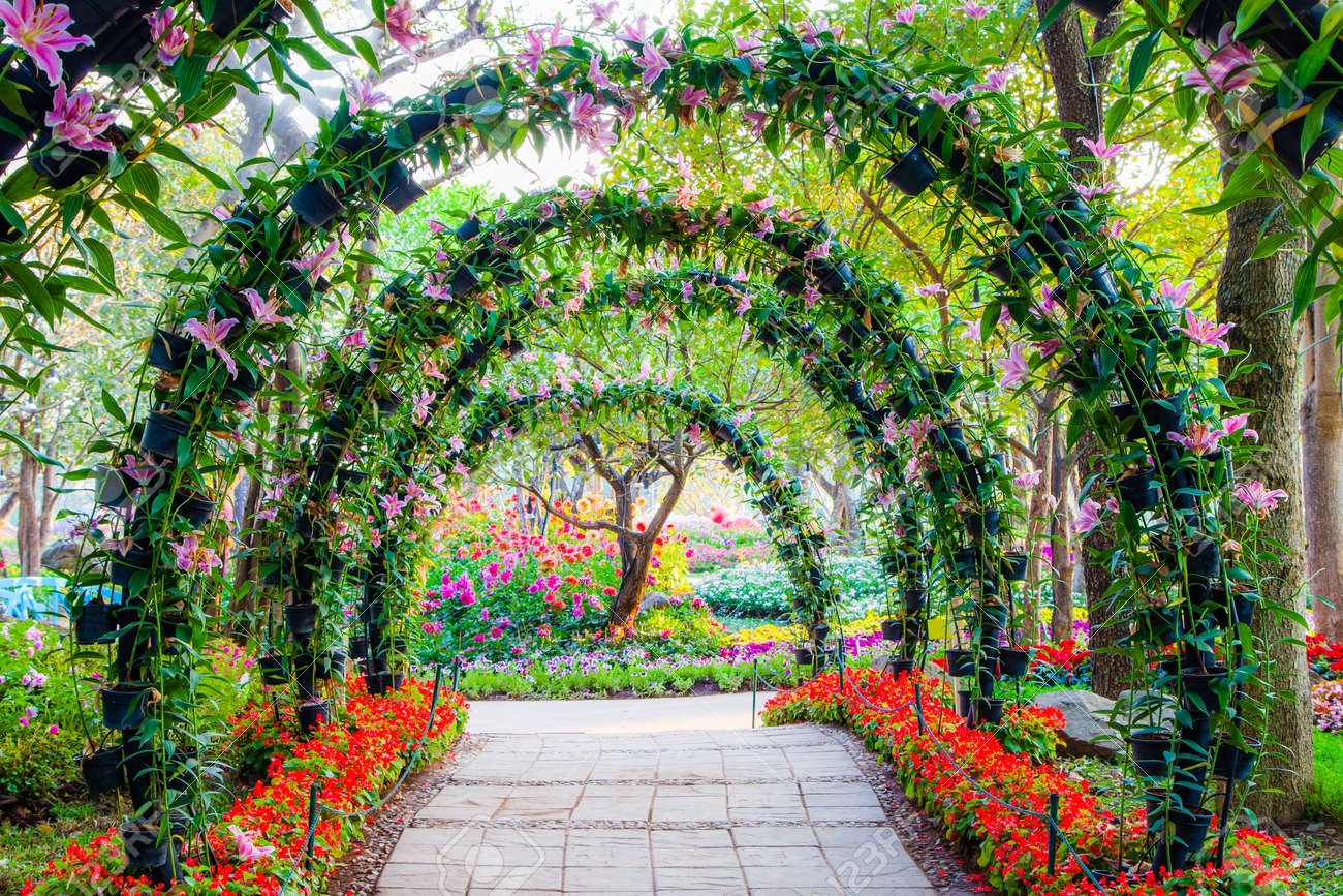 archway ornamental plants walkway flower photo arches in with stock garden beautiful