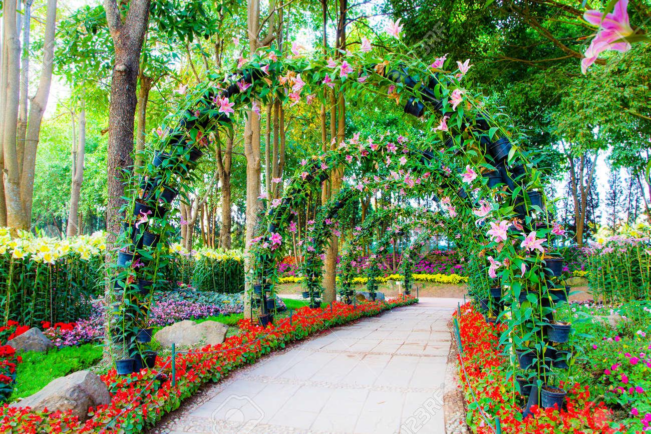 Hermosos Arcos De Flores Con Pasarela En Plantas Ornamentales De - Arcos-de-jardin