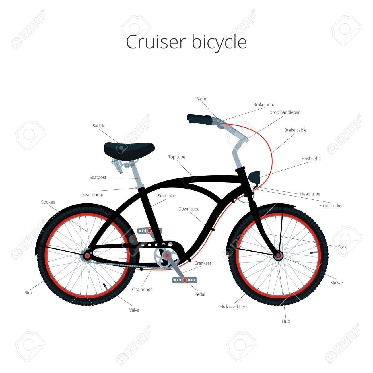 Cruiser Bicycle Infographic Elements And Parts Royalty Free