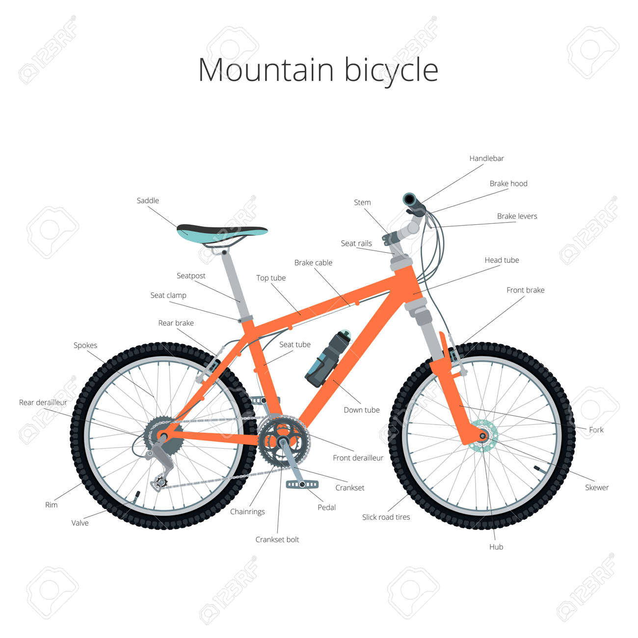 Mountain Bicycle Mountain Bike Infographics Royalty Free Cliparts