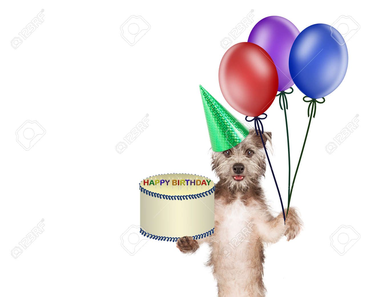 Cute And Happy Dog Carrying A Birthday Cake And Colorful Balloons