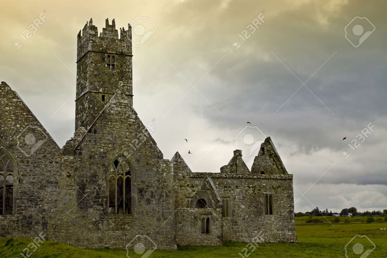 Overcast landscape of Ross Friary, Ireland. Stock Photo - 13660328