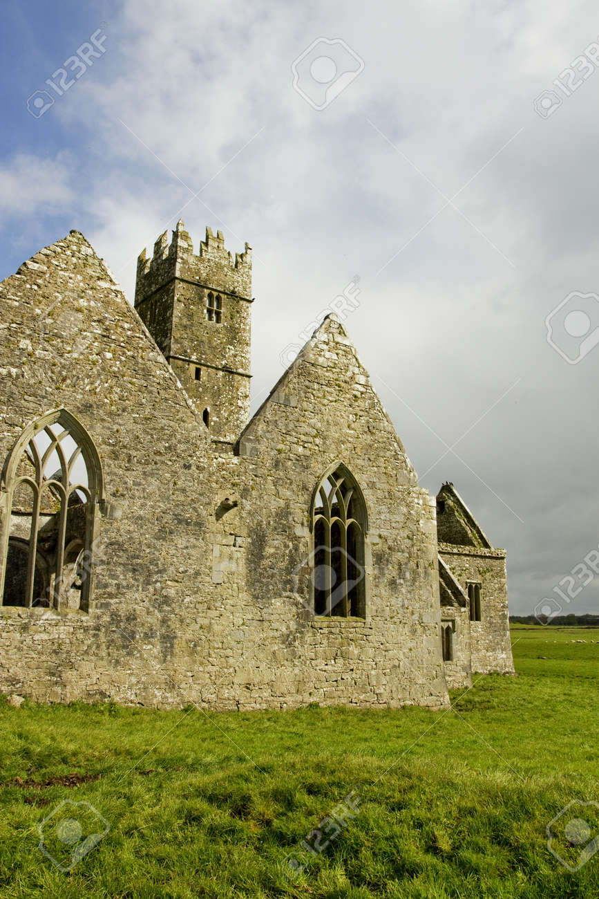 Overcast landscape of Ross Friary, Ireland. Stock Photo - 13660350