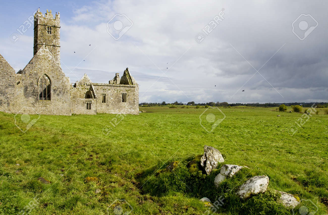 Overcast landscape of Ross Friary, Ireland. Stock Photo - 13660343