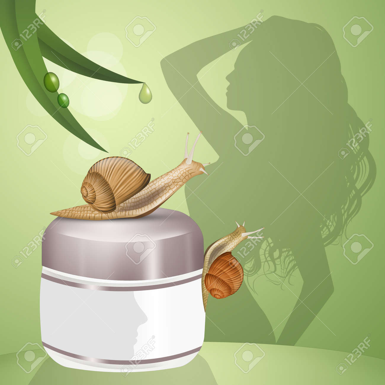 Cream Based On Snail Slime Stock Photo, Picture And Royalty Free ...