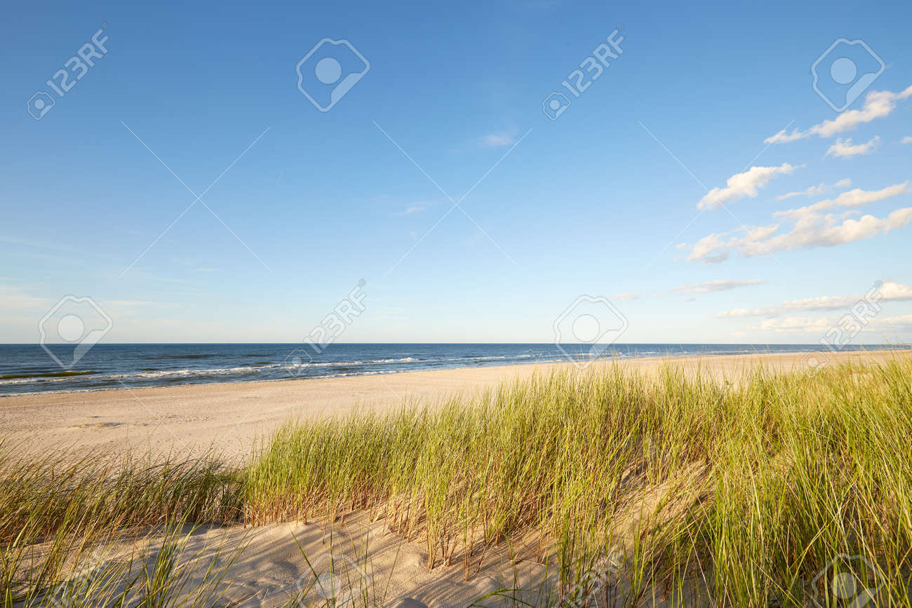 Slovenian national park, Leba sand dune on the Baltic coast - 159449149