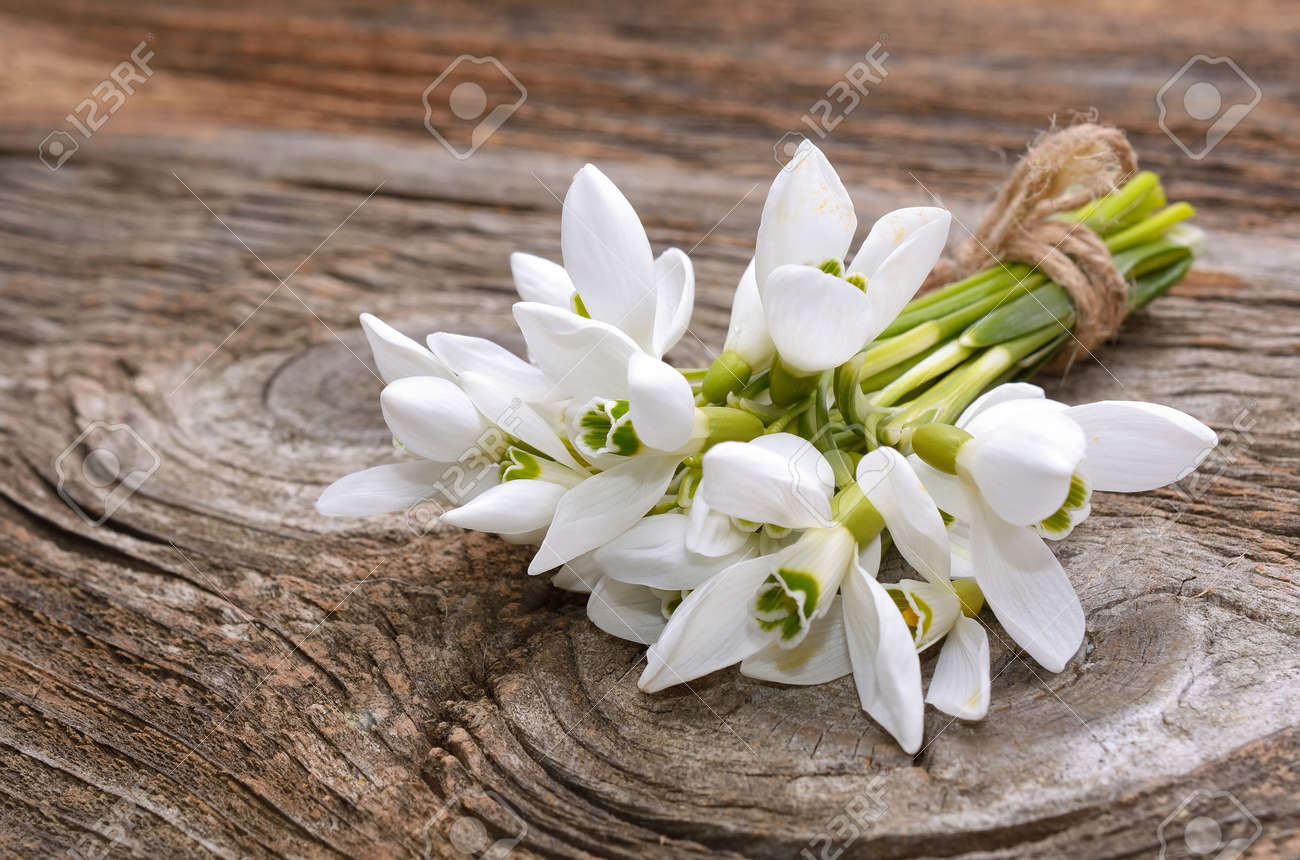 Bouquet Of The First Spring Flowers Snowdrops On The Wooden