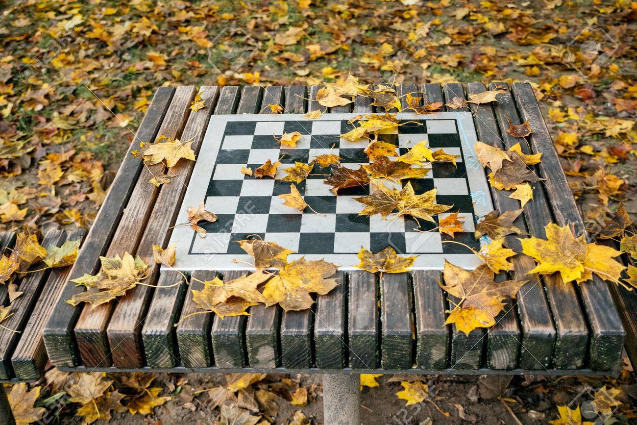 Výsledek obrázku pro chess autumn