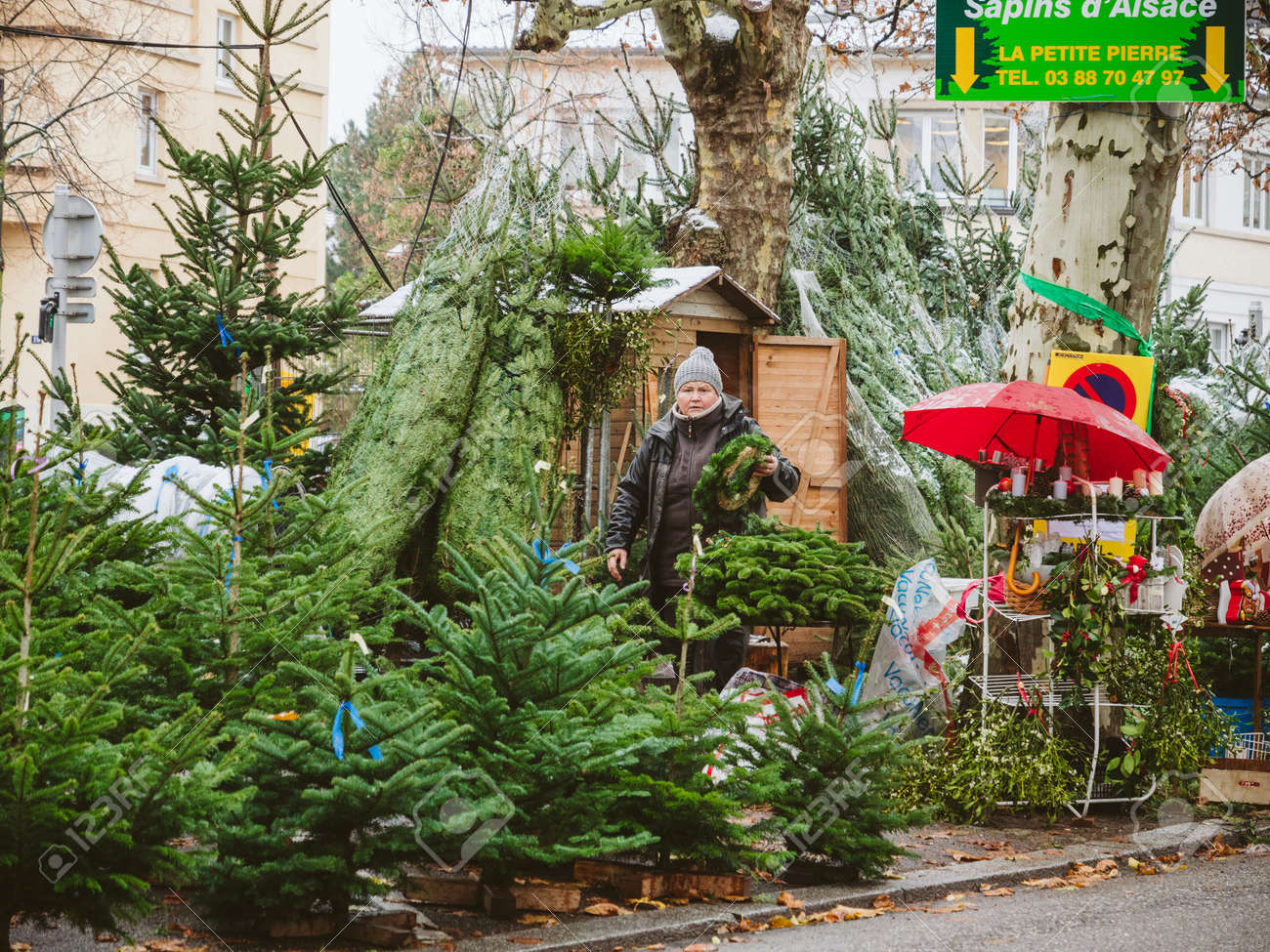 Strasbourg France Dec 4 2017 Christmas Tree Sale At The Stock
