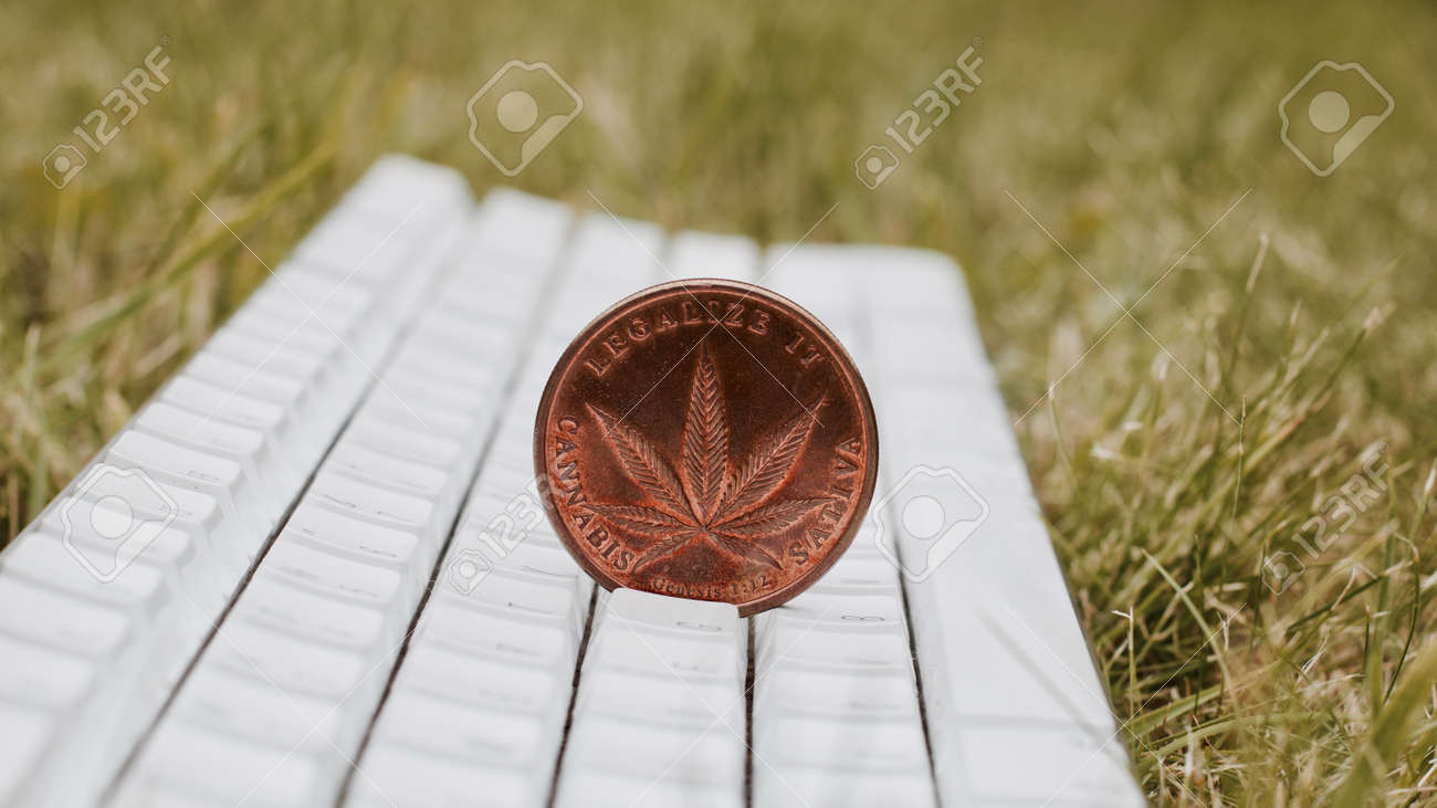 Brass cannabis sativa coin on the white keyboard in garden green brass cannabis sativa coin on the white keyboard in garden green concept stock photo biocorpaavc Images