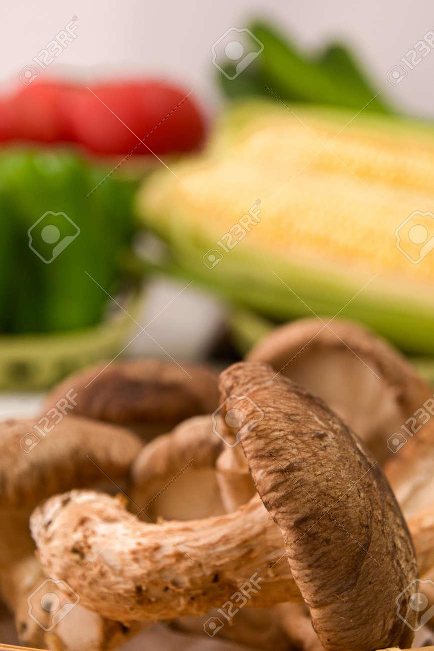 Closeup photo of mushroom from Hokkaido - 109978753