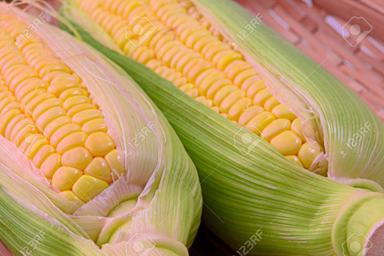 Closeup photo of Corn from Hokkaido - 109977877