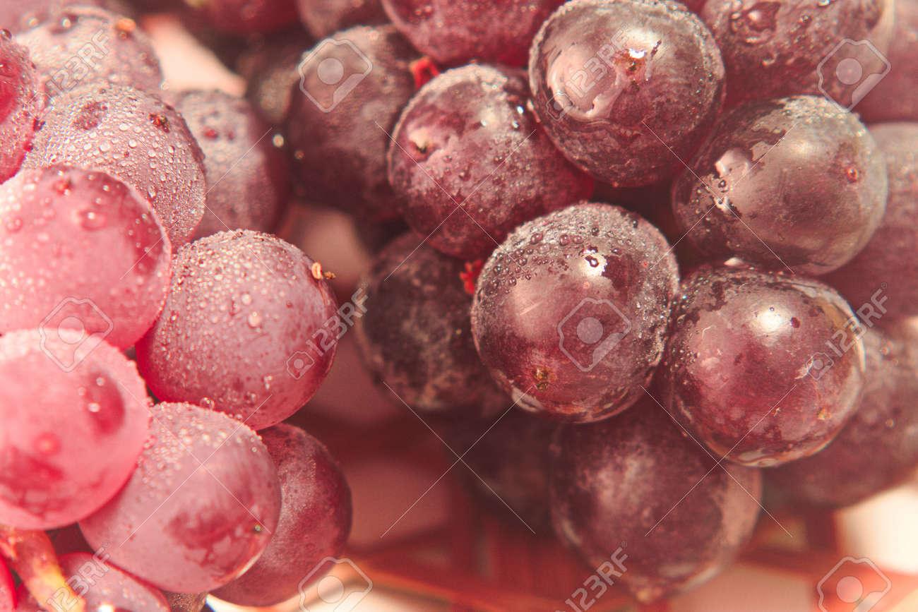 Closeup photo of Japanese grapes - 109977879