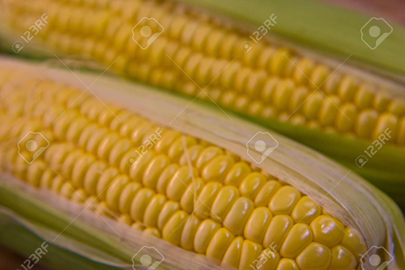 Closeup photo of Corn from Hokkaido - 109977880