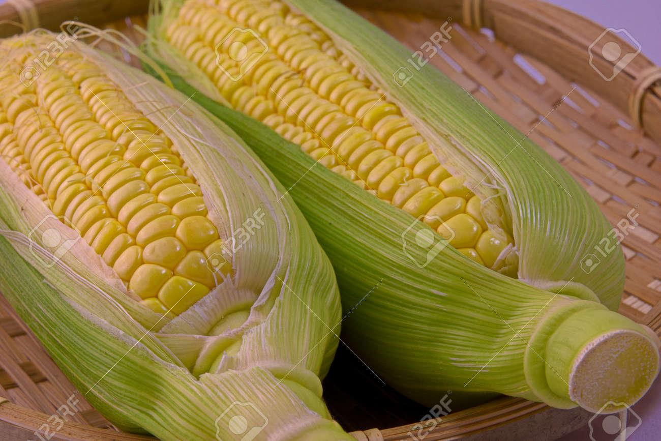Closeup photo of Corn from Hokkaido - 109977881