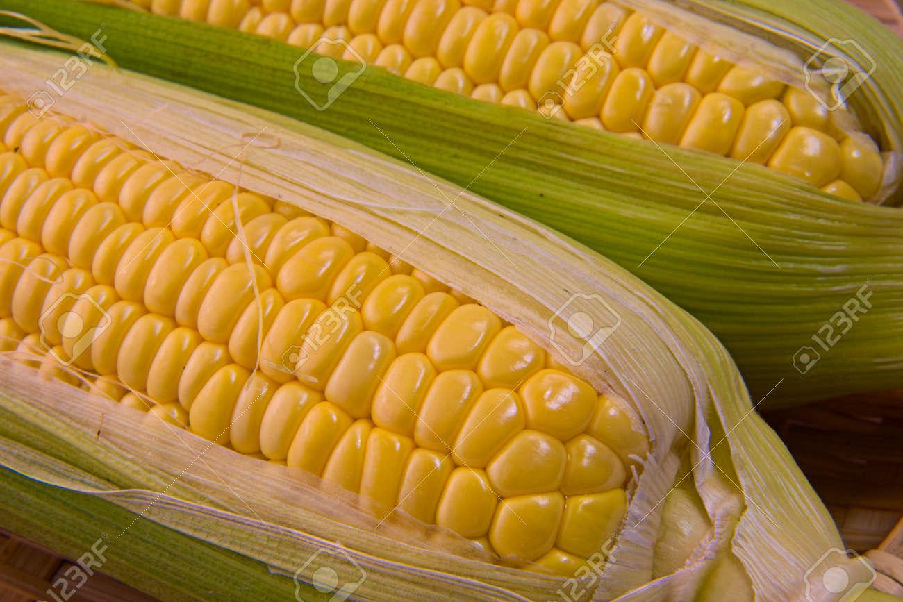 Closeup photo of Corn from Hokkaido - 109977884