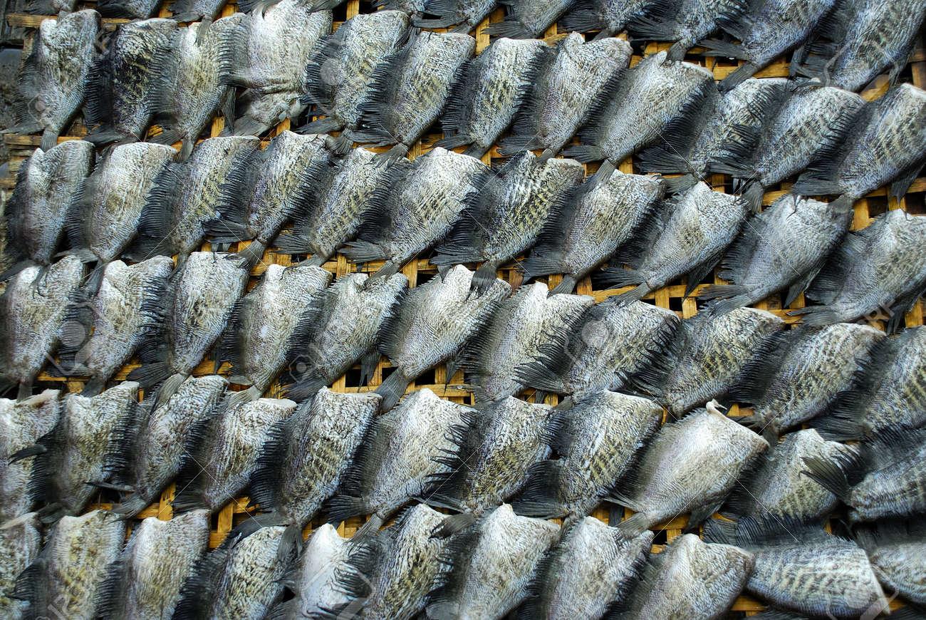 Dry fish Stock Photo - 17202790