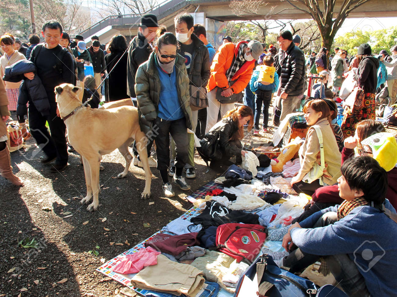 HARAJUKU,TOKYO - DECEMBER 16, 2012 - Shoppers come to flea market at Yoyogi Park in Harajuku. It is the monthly flea market in the city of fashion Harajuku. Stock Photo - 17261903