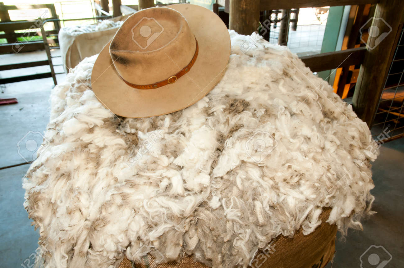 Merino sheep wool with a hat Stock Photo - 90064428 16c285cbcba