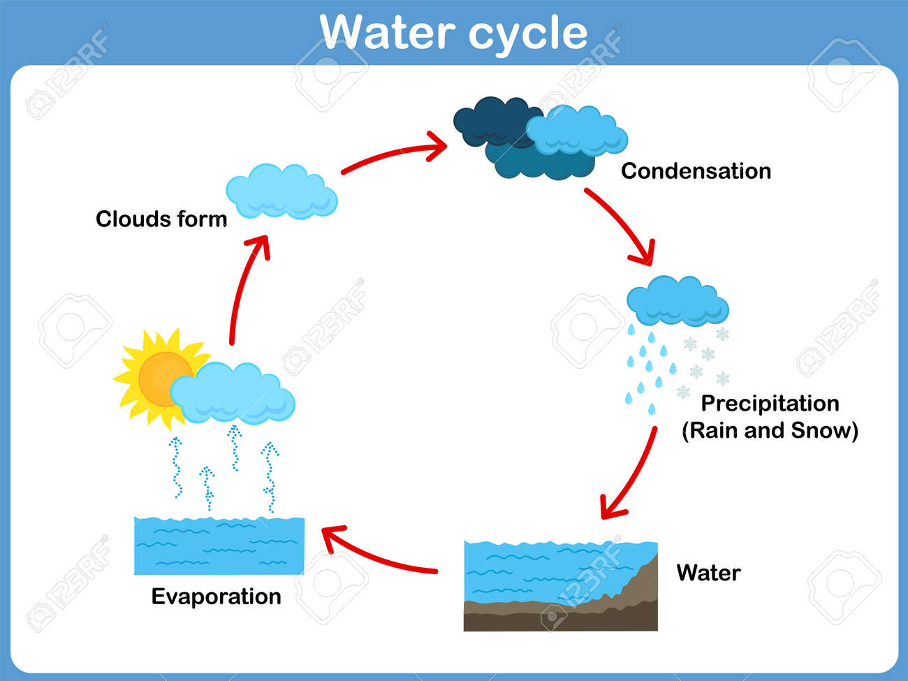 vector cycle of water for kids royalty free cliparts, vectors, and