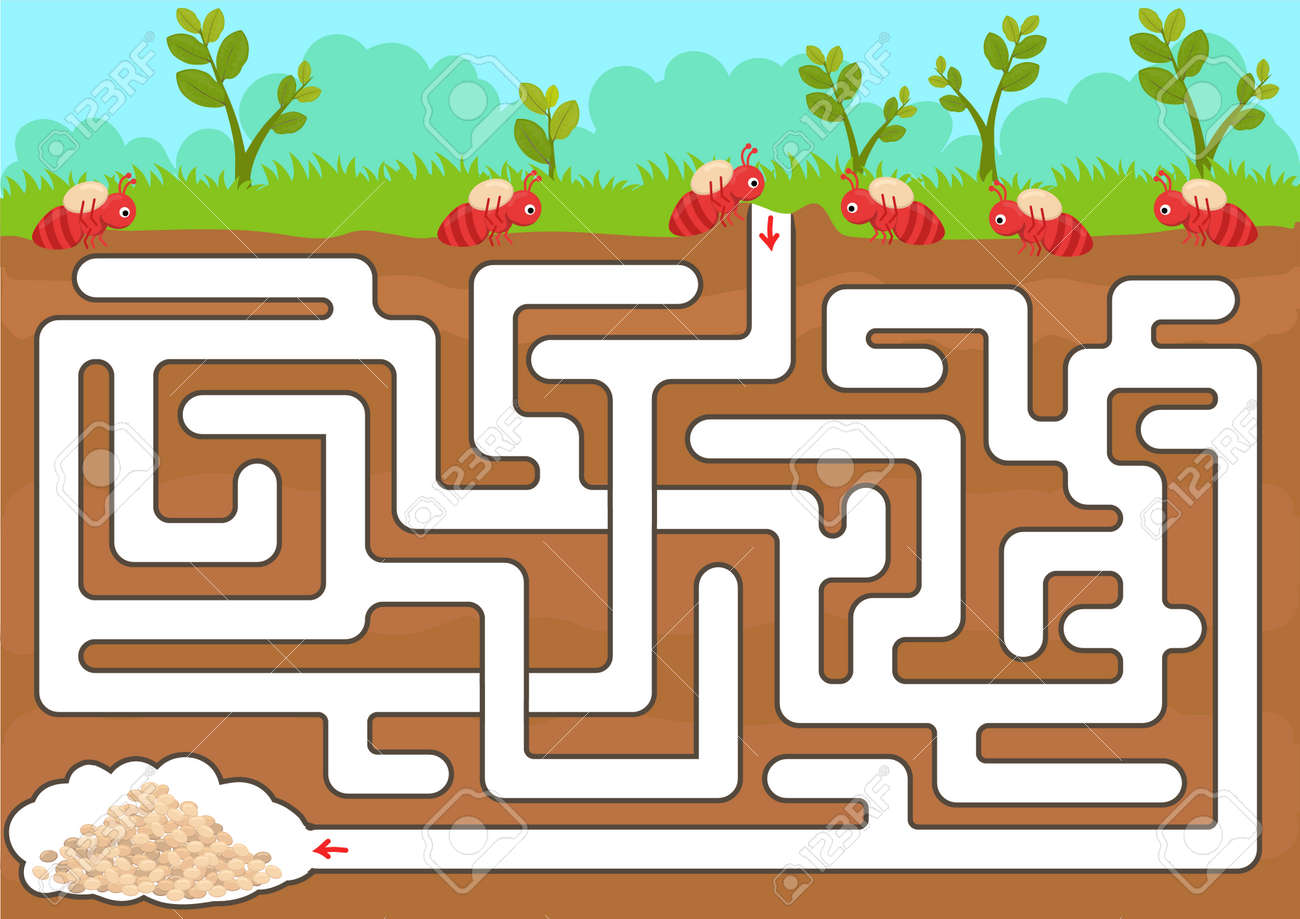 vector maze game with find ant room in underground royalty free