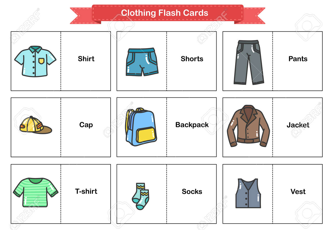 Clothing Flash Cards Woman And Man Clothes And Accessories Collection Flashcards For Education Royalty Free Cliparts Vectors And Stock Illustration Image 144938847