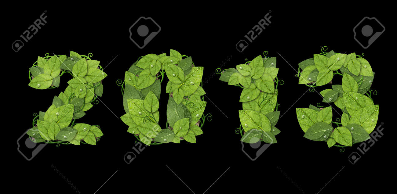 New year 2013. Date lined green leaves with drops of dew. Isolated on black background Stock Photo - 16081851