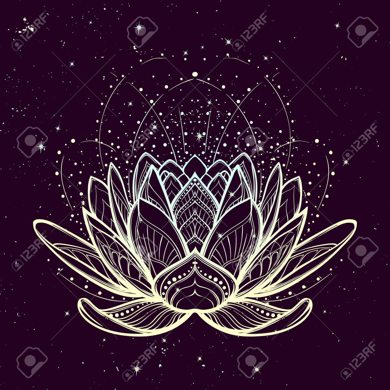 Lotus Flower Intricate Stylized Linear Drawing On Starry Nignt