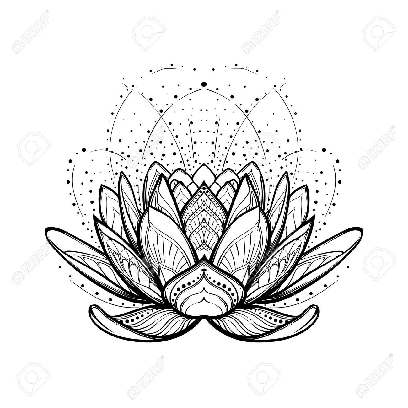 Fleur De Lotus Dessin Stylise Lineaire Complexe Isole Sur Fond
