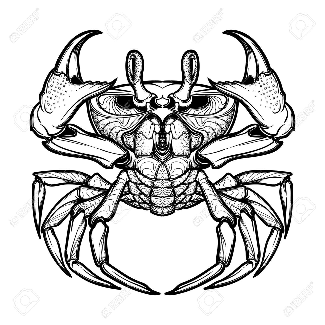 Cancer zodiac tribal tattoo stock photos royalty free cancer cancer accurate symmetrical drawing of the beach crab concept art for tattoo horoscope buycottarizona