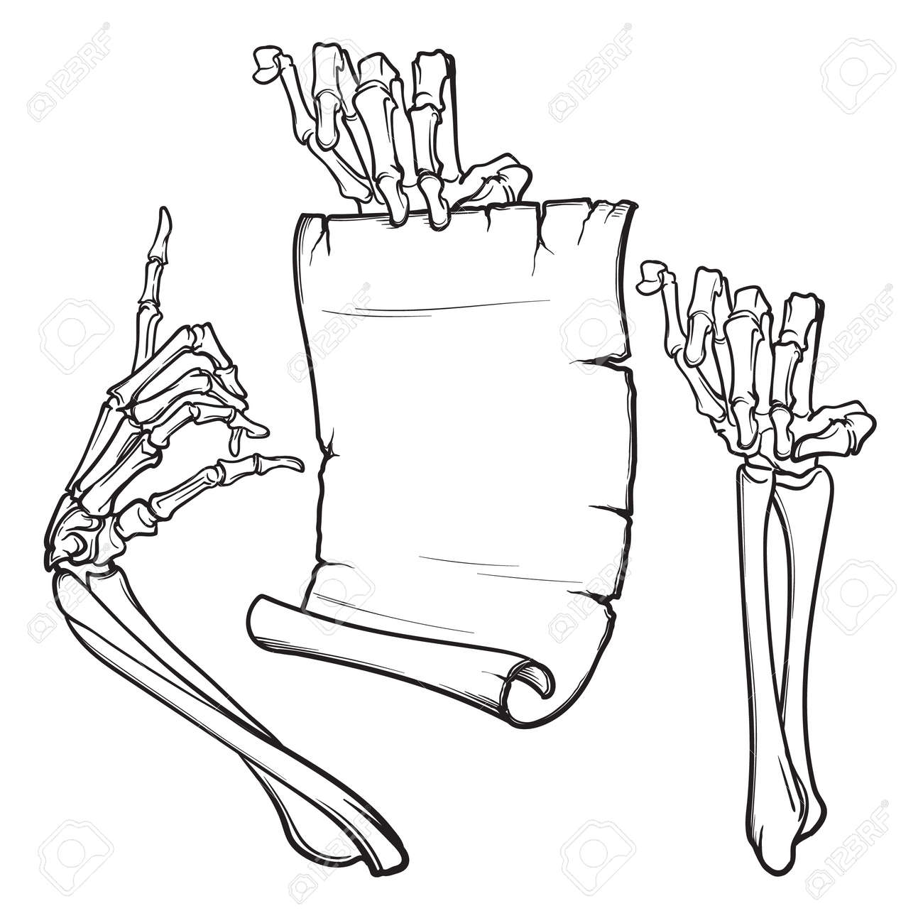 Halloween design elements with skeleton hands and paper scroll. - 88094550