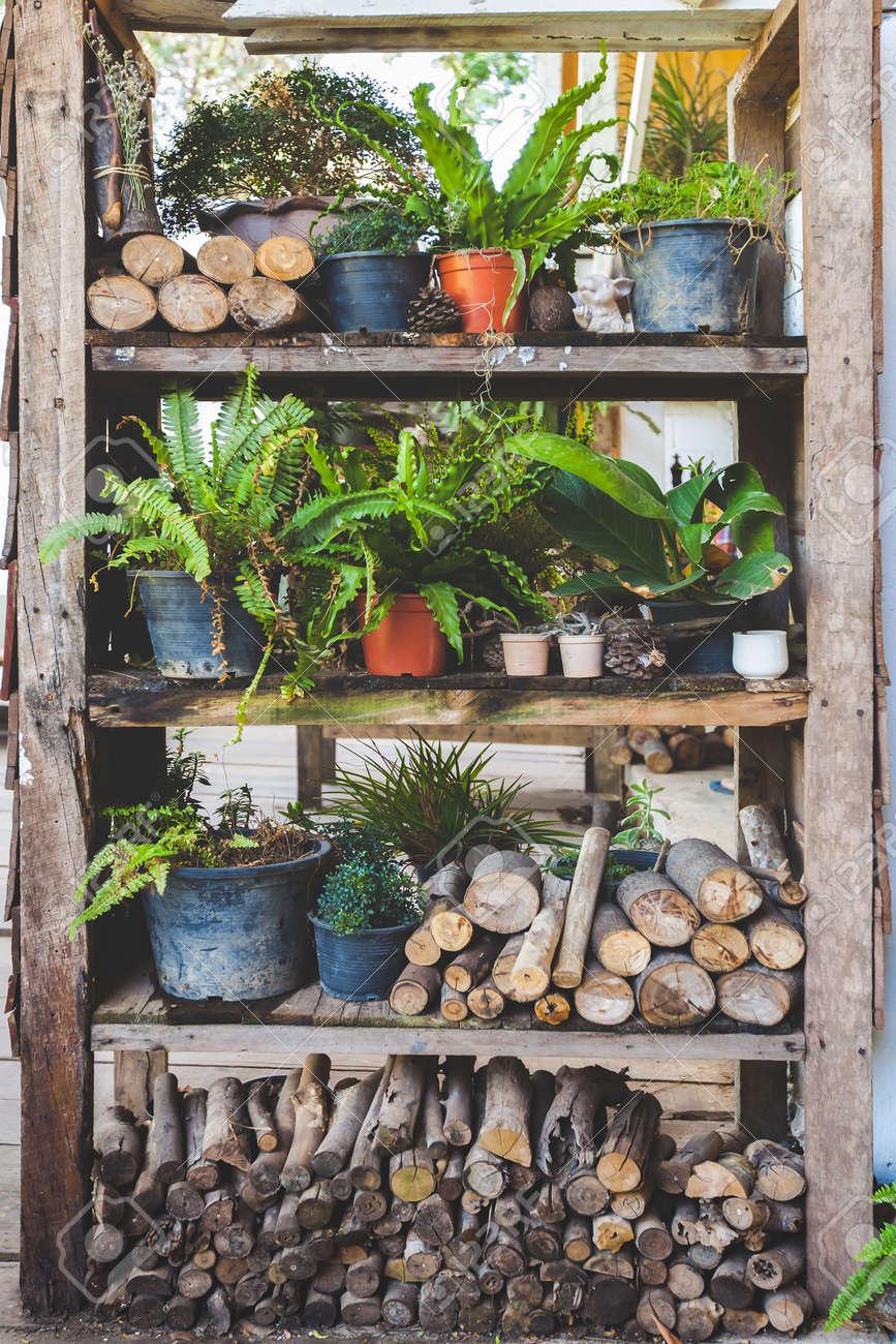 Hinterhof Garten In Holzplatte Vintage Regal Für Pflanzen Standard Bild    71242285